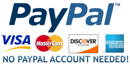 Secured Credit Card Payment Through PayPal